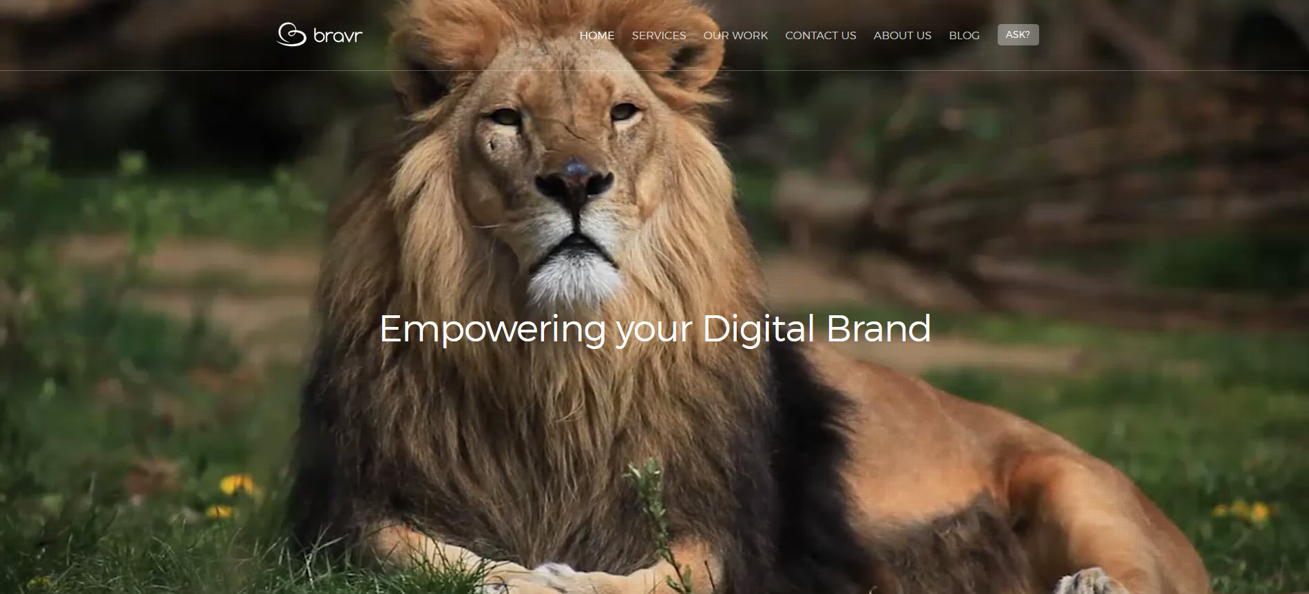 SEO Agency - Bravr Digital Marketing Agency